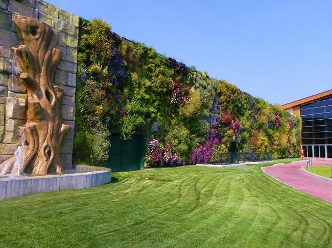 вертикальное озеленение, вертикальное озеленение своими руками, вертикальное озеленение фото