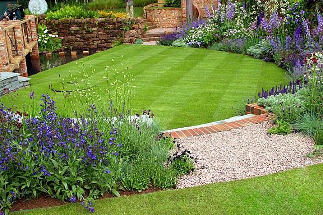 газон, газонная трава, семена газонных трав