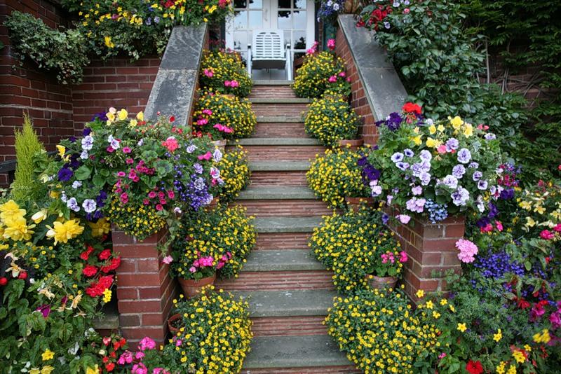 красивый сад цветник газон садовая дорожка вазоны