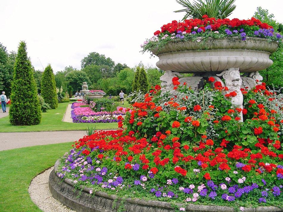 Риджентс парк Англия Regent's Park розы розарий альпийская горка цветник