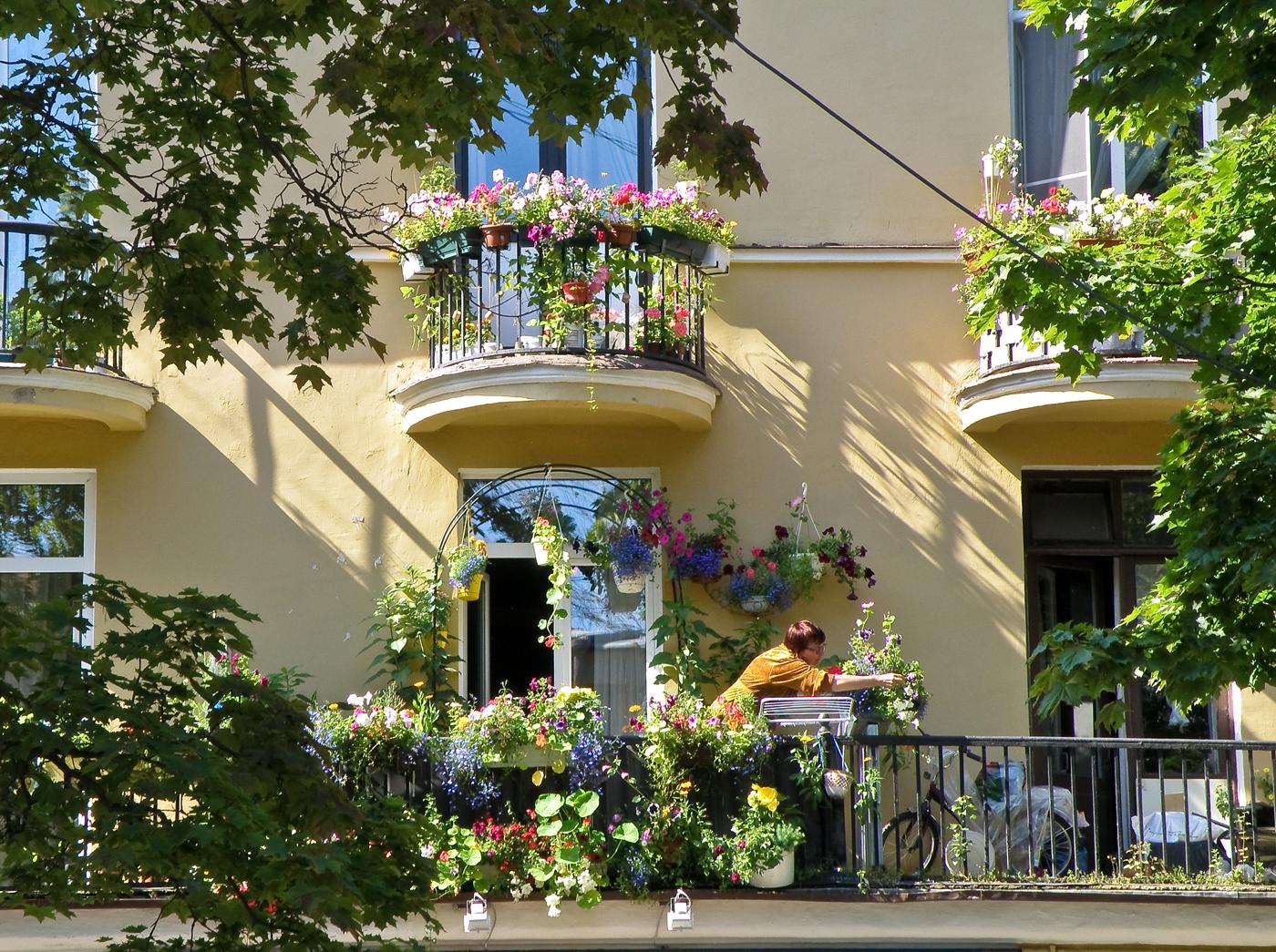 цветы на балконе балконные подставки
