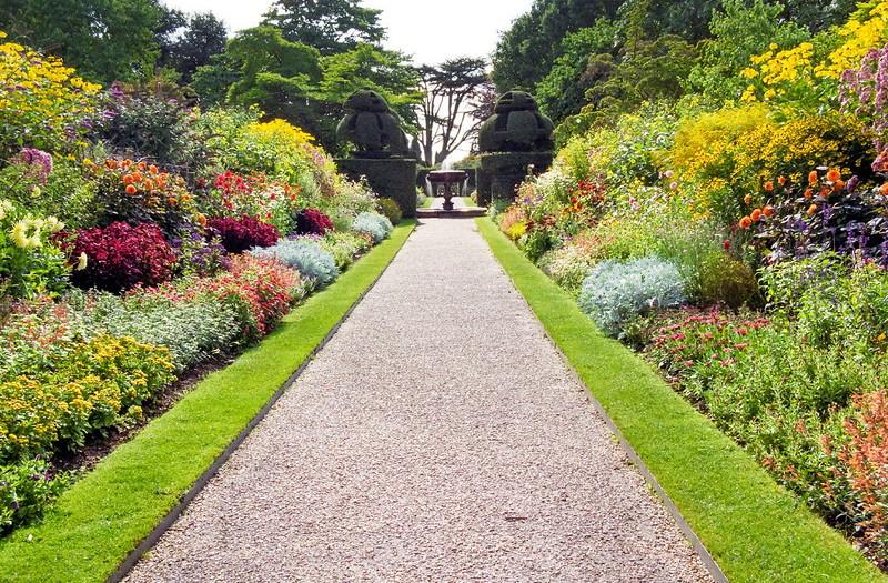 Оформление садовых дорожек цветы цветочные композиции