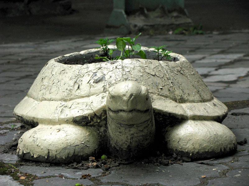 клумба черепаха из покрышек своими руками