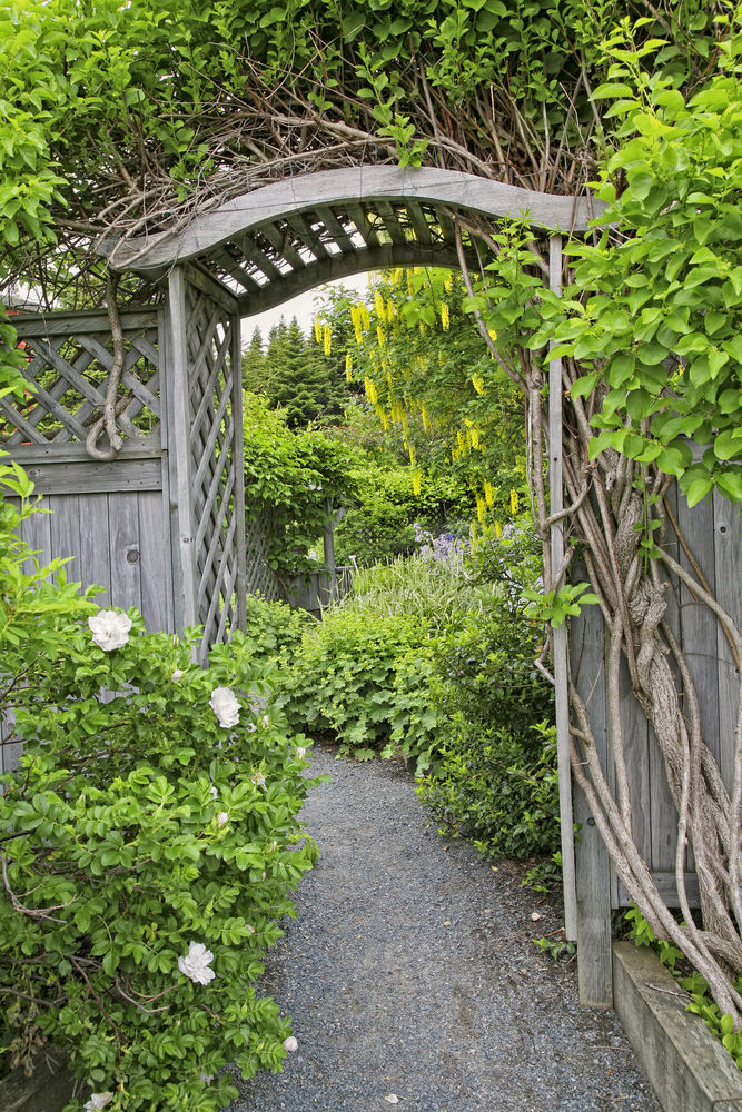 арка на участке деревянная арка садовая арка