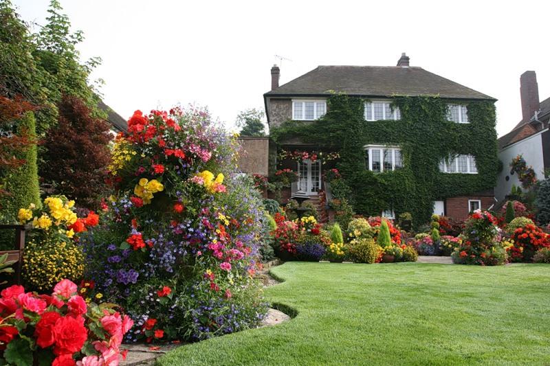 красивый сад цветник газон садовая дорожка вертикальное озеленение