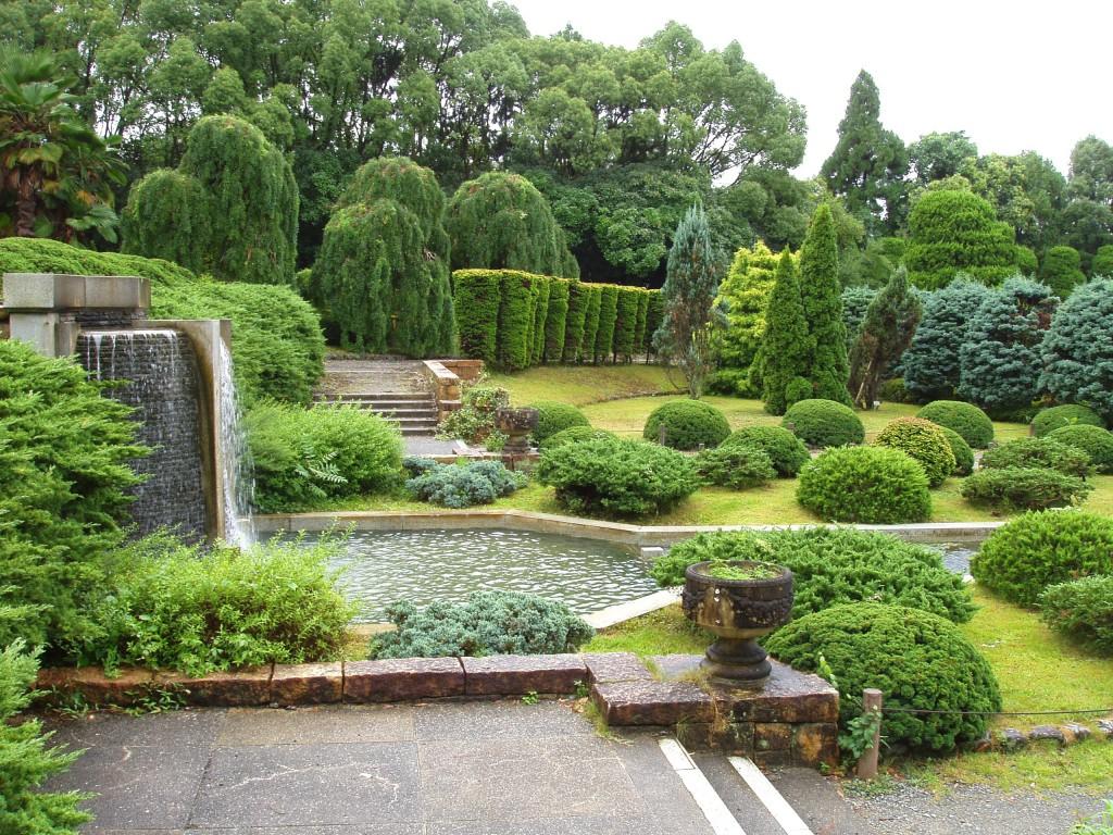 красивый сад газон