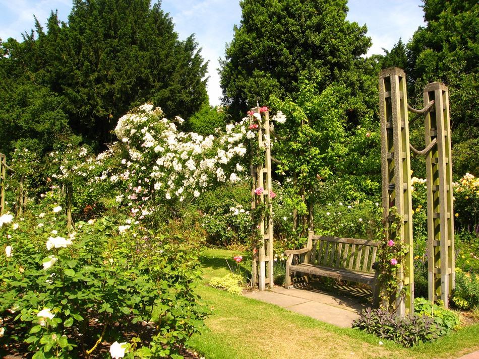 Риджентс парк Англия Regent's Park розы шпалеры скамейка арка беседка