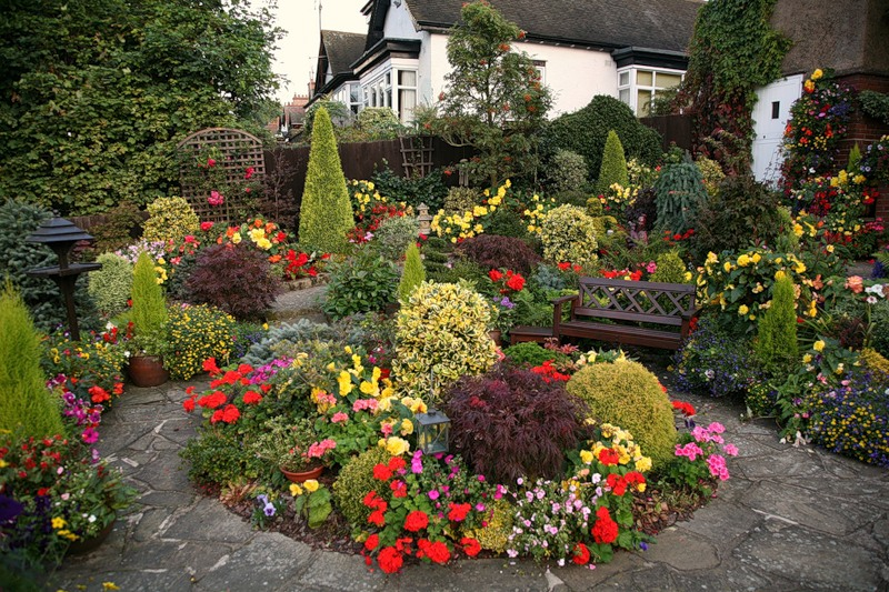 красивый сад цветник газон садовая дорожка  скамейка для сада