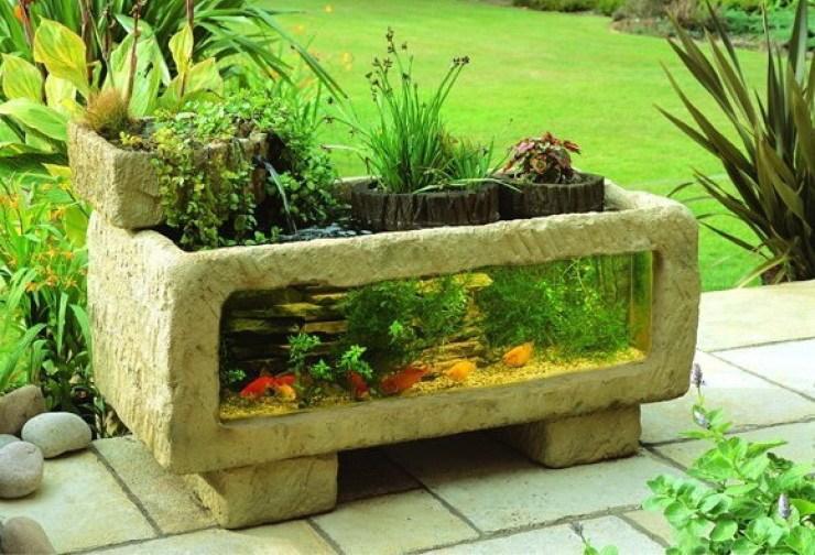 аквариум на садовом участке