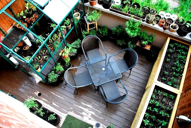 овощи на балконе, ящик на балкон, ящик для овощей