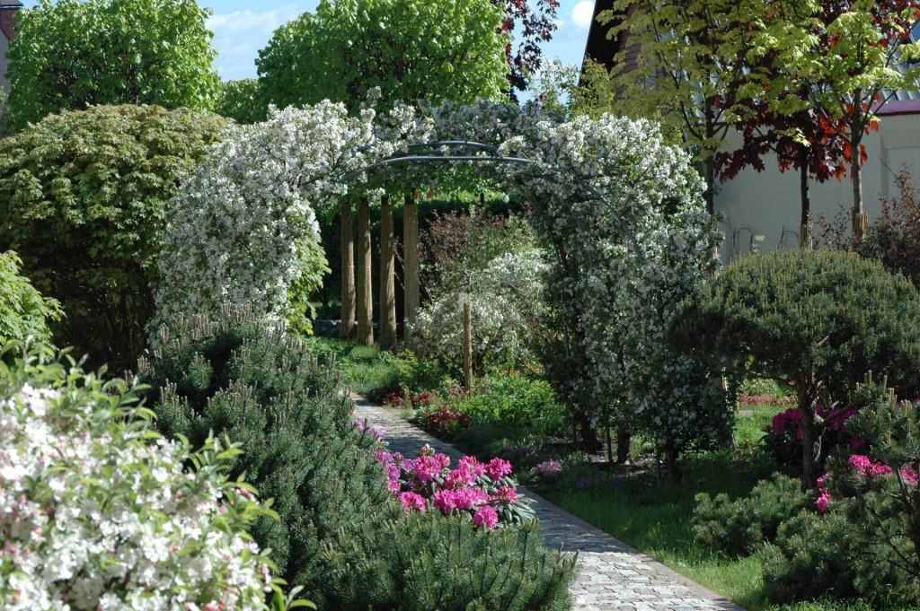 садовая арка арка для сада для садовой дорожки