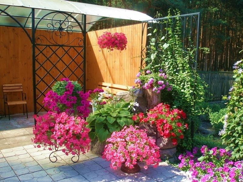 Озеленение дачного участка арка цветы в кадках беседка