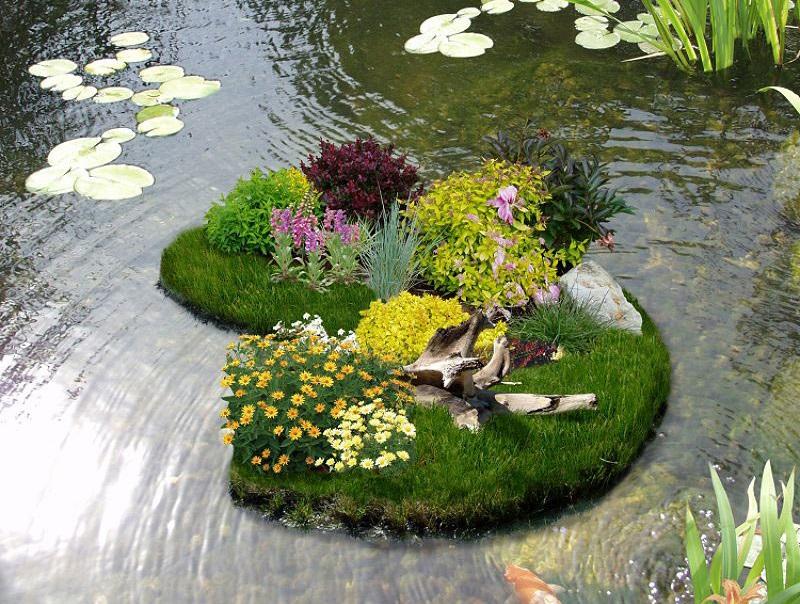 клумба на воде, клумба своими руками, цветник на даче, пруд своими руками