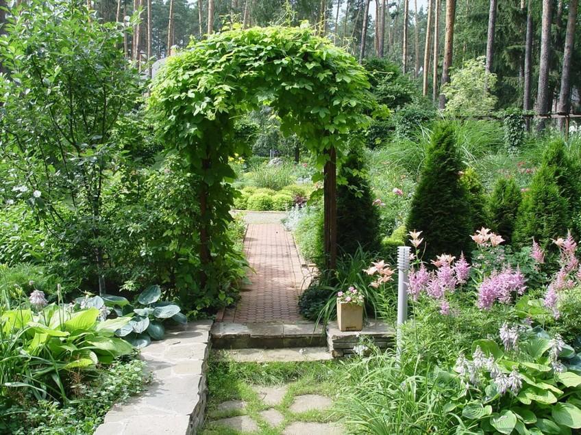 как увеличить пространство сада