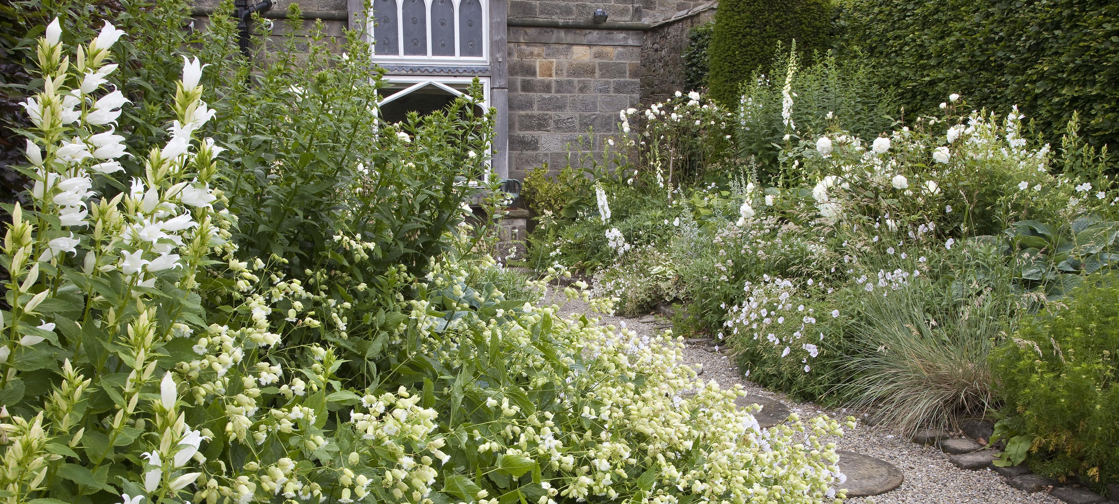 монохромный белый сад своими руками