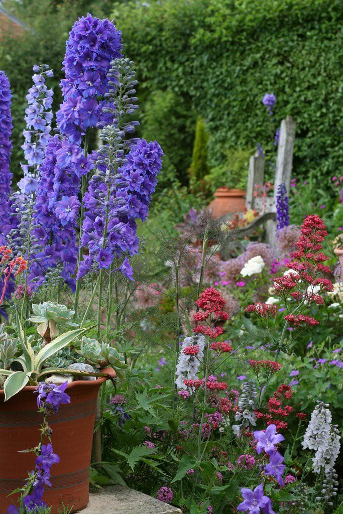 ascot garden красивый вазон для цветов