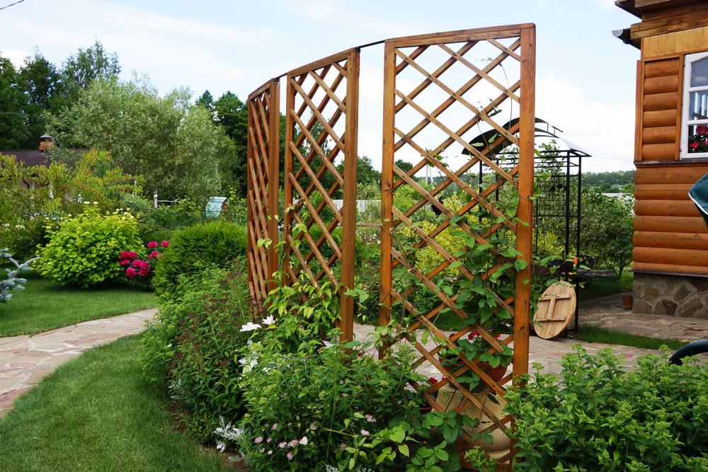 пергола зонирование сада