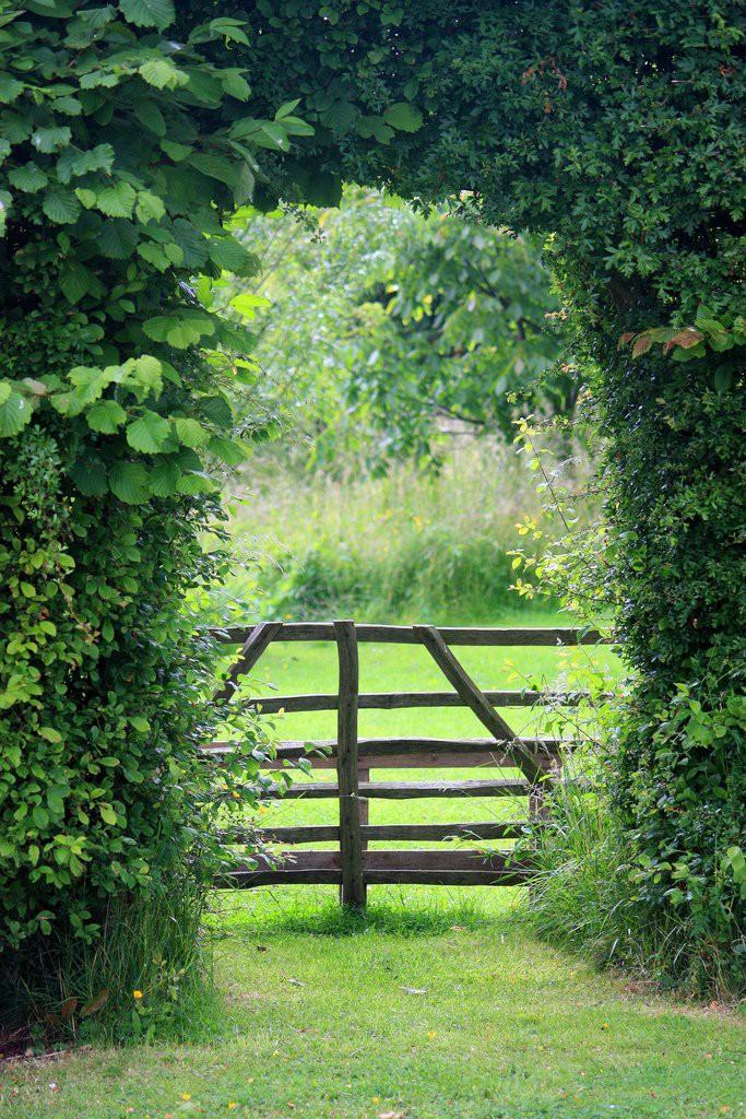 ascot garden красивый сад арка для вьющихся растений