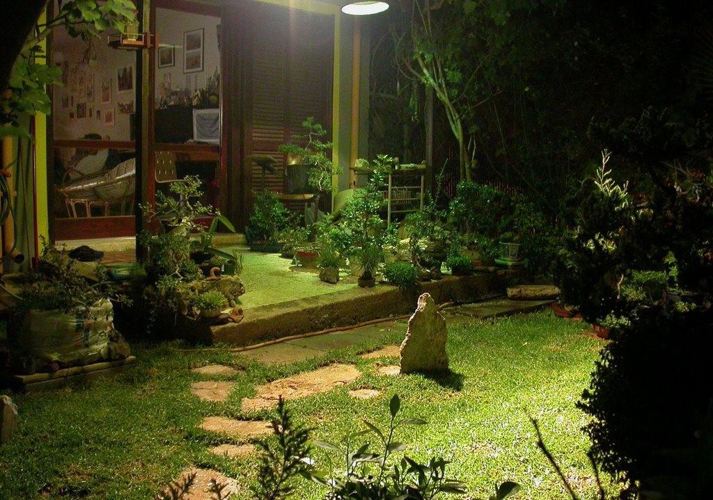 ночной лунный сад своими руками ночные цветы растения