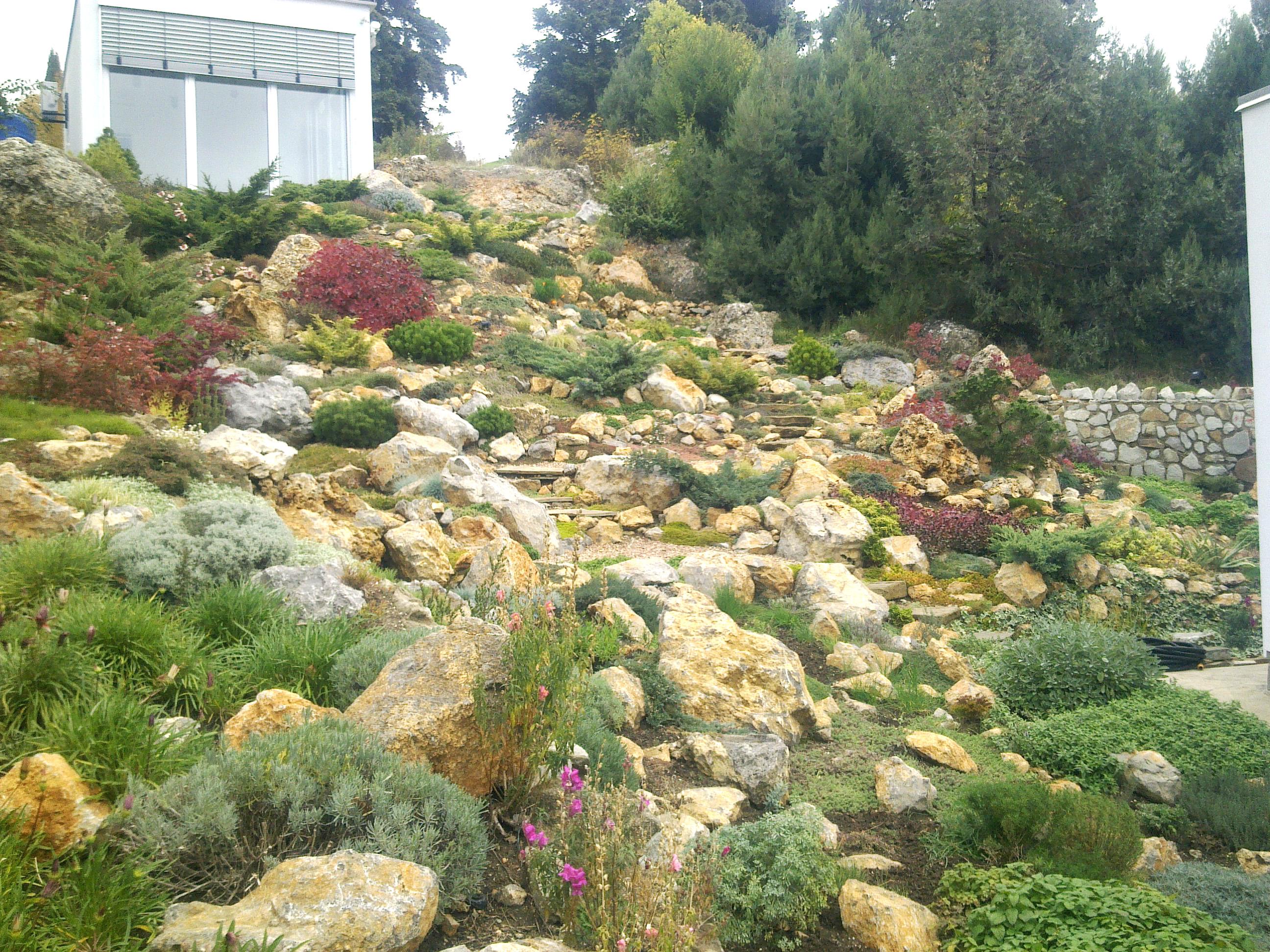сухой каменистый сад
