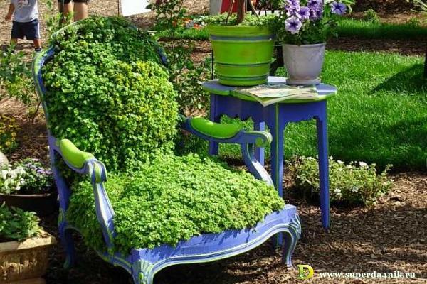 зеленый сад своими руками клумба из кресла