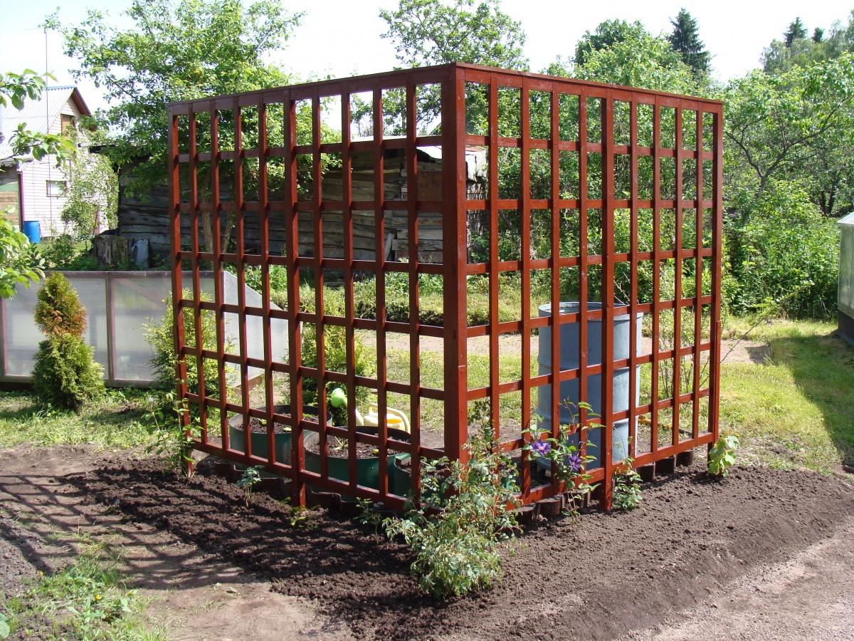 вертикальное озеленение шпалера