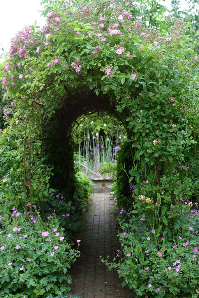 ascot garden красивый сад арка