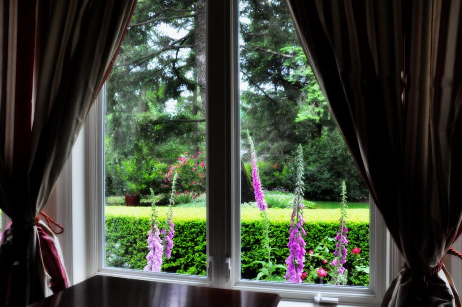 красивый вид из окна в сад