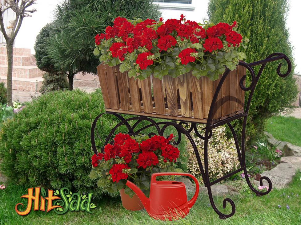 зеленый сад своими руками тележки для цветов купить недорого интернет магазин