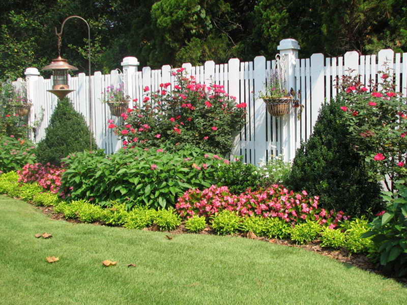 украшаем забор цветами своими руками