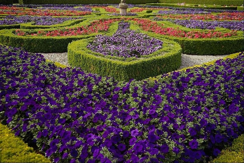 лабиринт, сда лабиринт, садовый лабиринт, ландшафтный дизайнлабиринт, сда лабиринт, садовый лабиринт, ландшафтный дизайн