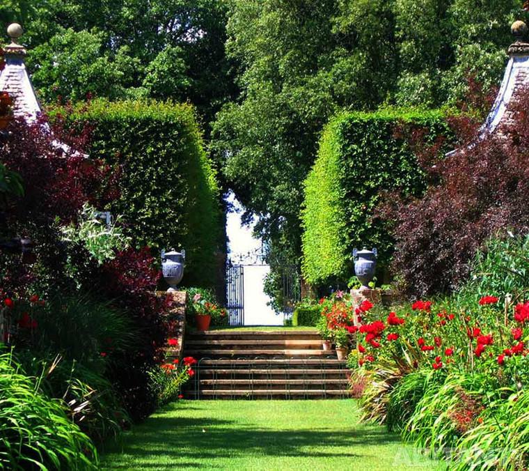 лестница в саду вертикальное озеленение