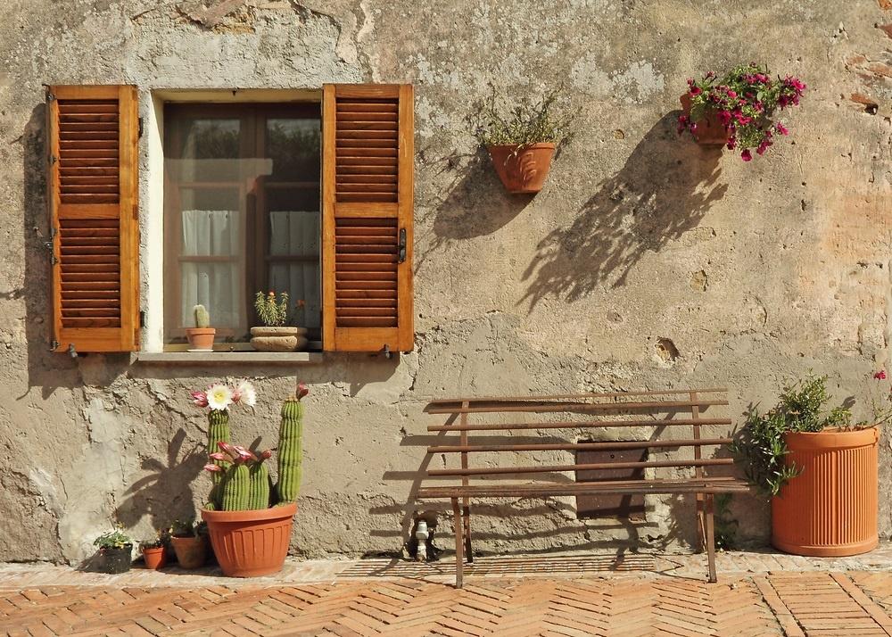 вертикальное озеленение украшение стен средиземноморский стиль