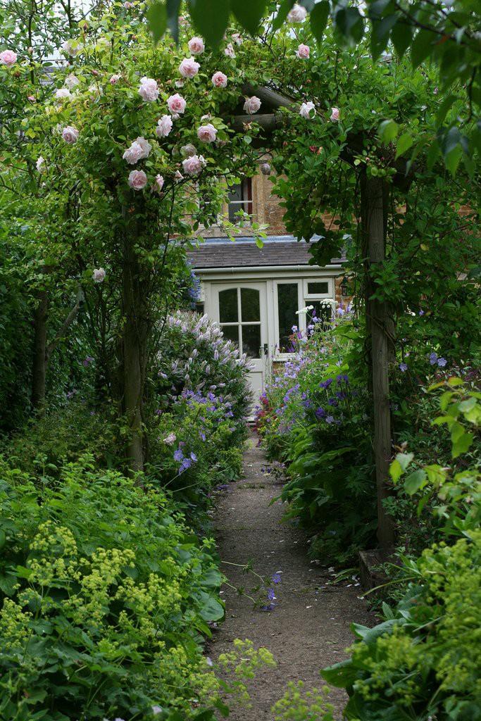 ascot garden красивый сад арка увитая цветами