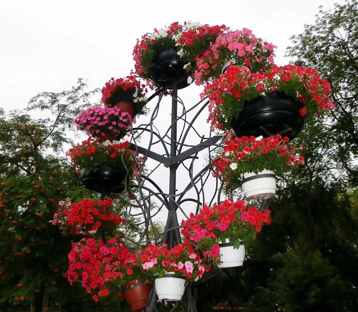 многоярусные кашпо для цветов