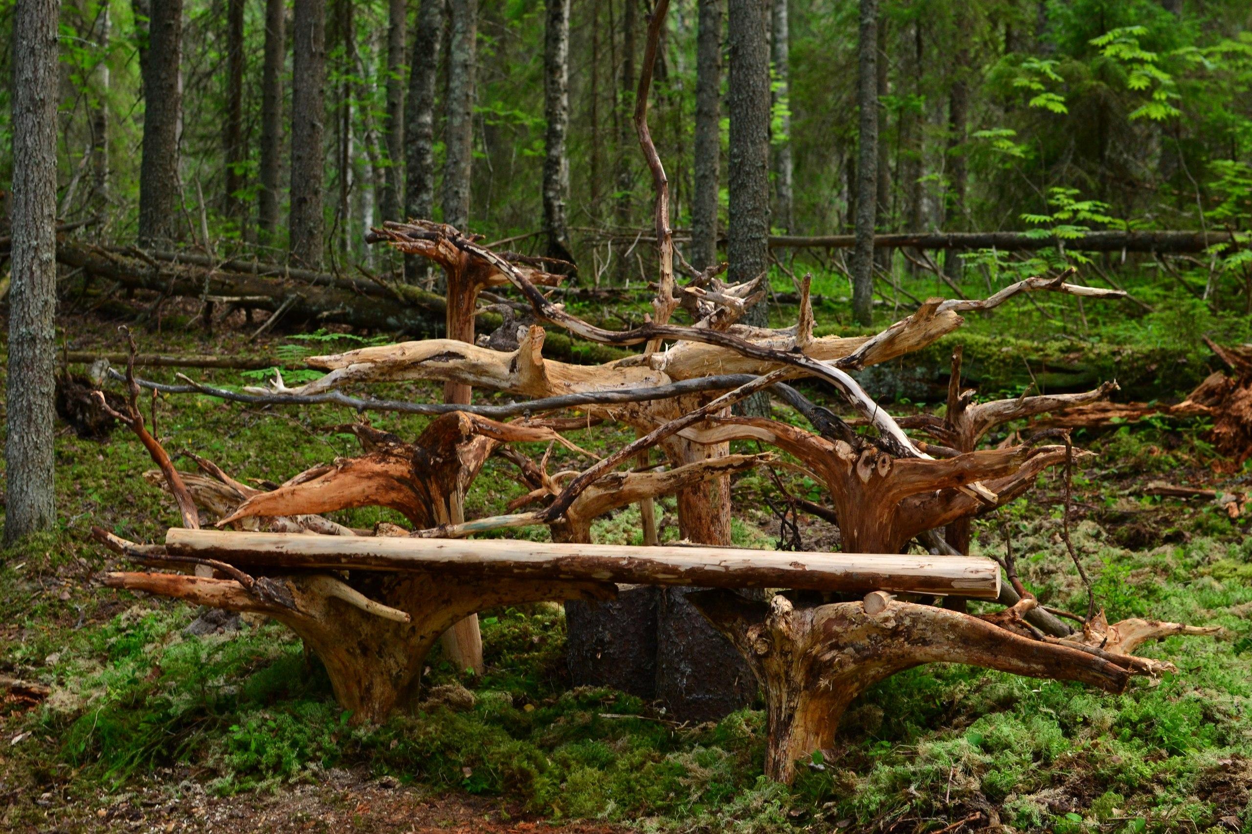скамейка из корней деревьев своими руками