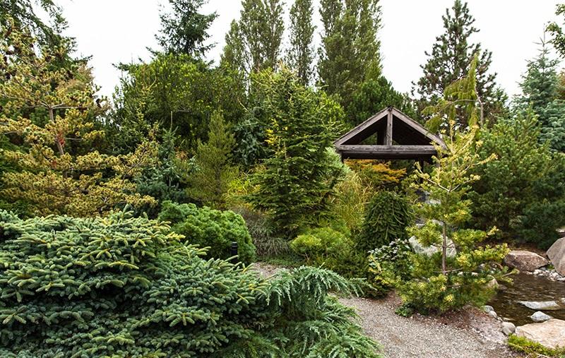 сад naturel