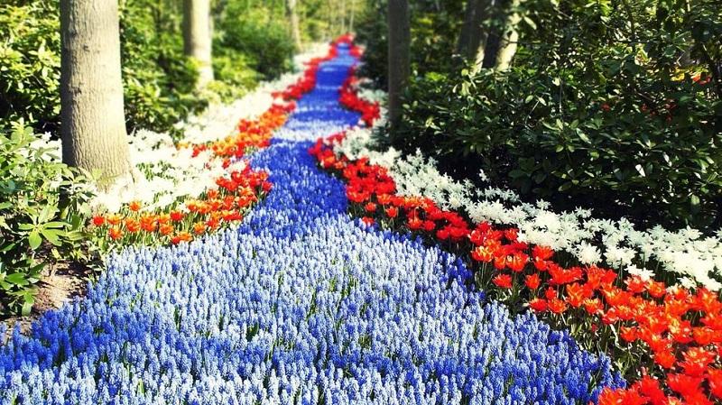 ручей из цветов своими руками