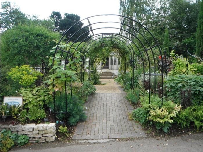 красивый сад сады Уизли Англия садовая дорожка пергола