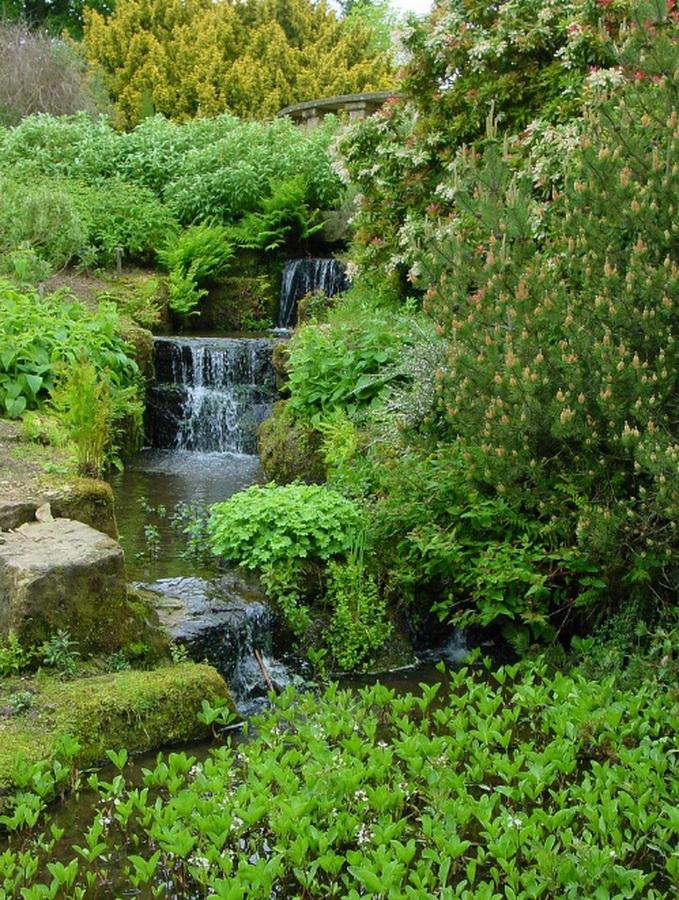 замок Wakehurst красивый сад микс декоративные деревья водопад