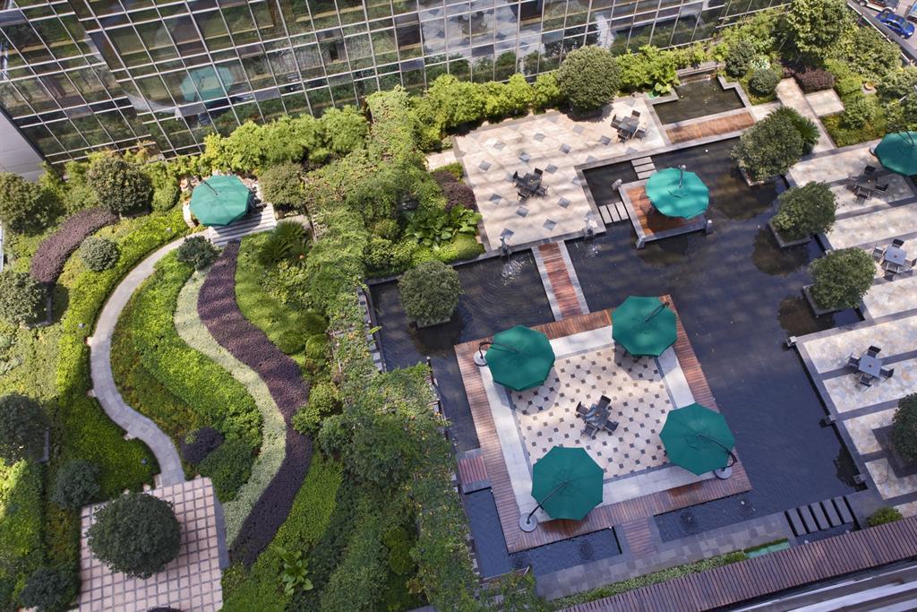 сад на крыше озеленение крыши своими руками
