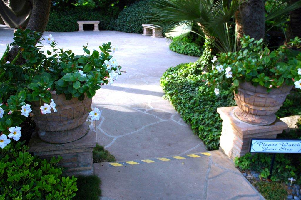 украшение садовых дорожек при помощи вазонов