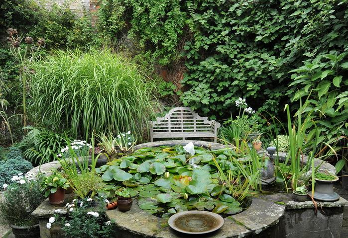 Магнолия Хаус красивый сад Англия декоративный пруд скамейка