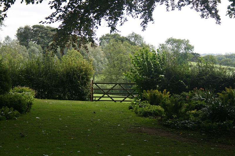 сады Котон Манорс Coton Manor Англия газон