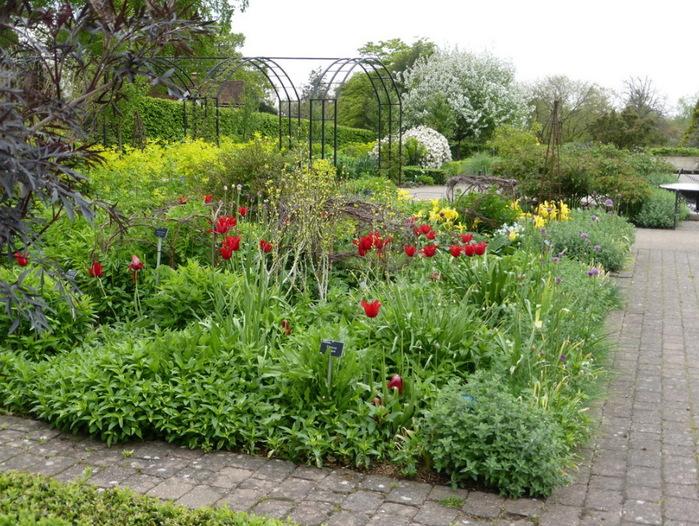 красивый сад сады Уизли Англия садовая дорожка пергола миксбордер