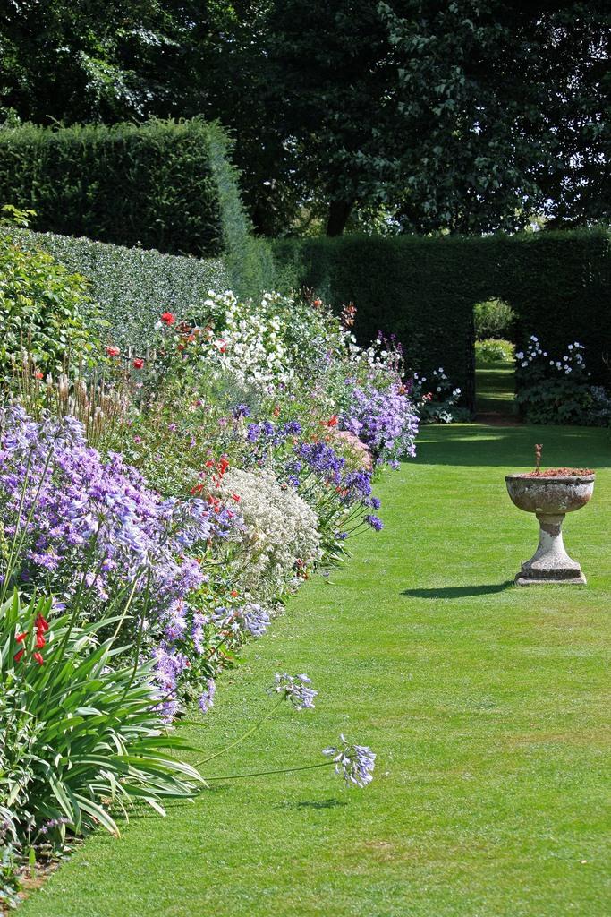 сады Котон Манорс Coton Manor Англия газон вазон
