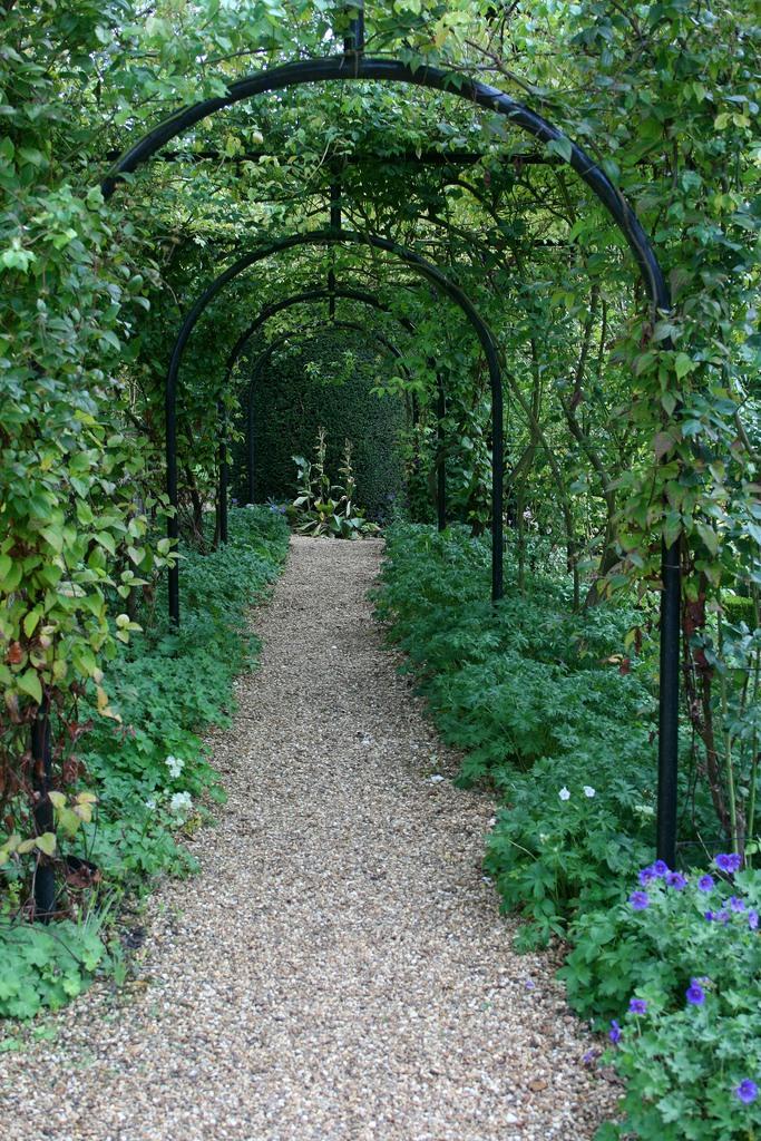 сады Котон Манорс Coton Manor Англия пергола