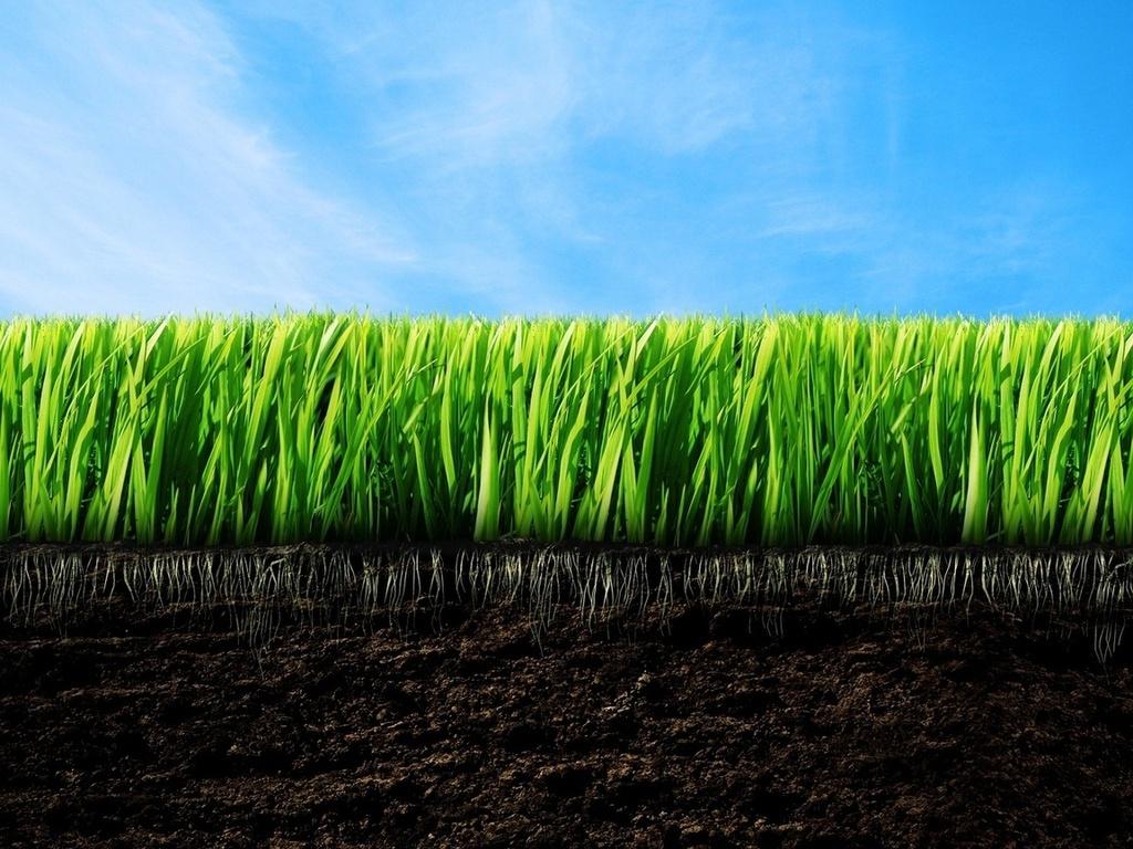 как повысить плодородность почвы