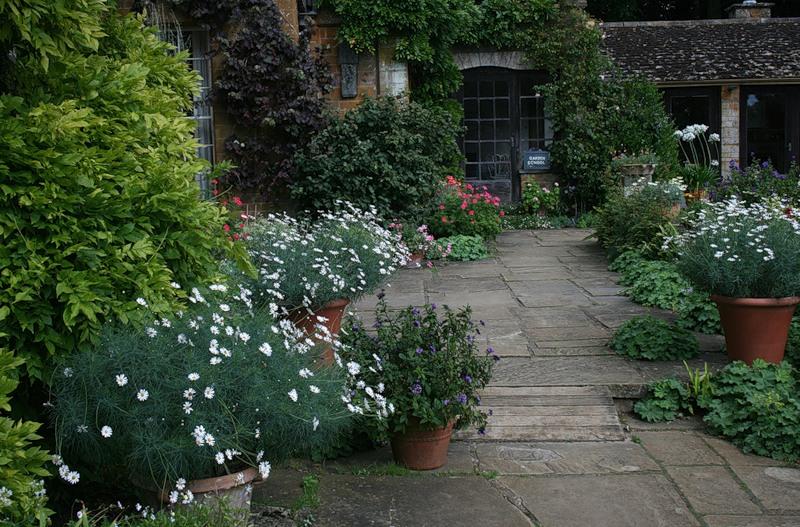 сады Котон Манорс Coton Manor Англия цветник вазон