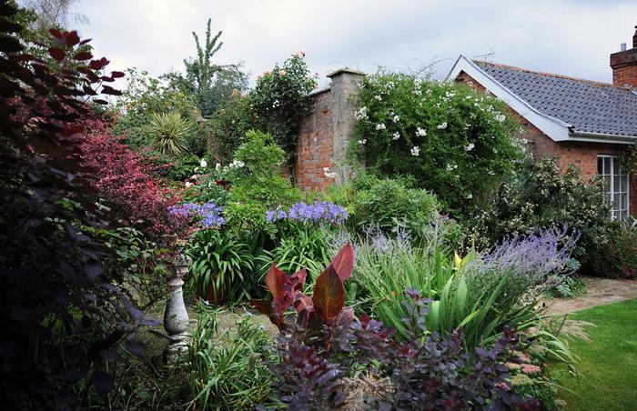 Магнолия Хаус красивый сад Англия цветник